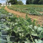 The Midwest Vegetable Production Guide for Commercial Growers (ID-56) is updated annually.