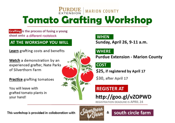 Tomato Grafting Flyer