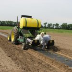 Waterwheel transplanters are commonly used for vegetables on plastic-covered beds. (Photo by K. Freeman)