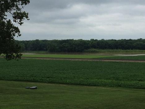 Figure 1. Flooding in a field.