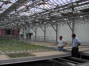 Figure 2. Ebb and Flow benches used for seedling propagation