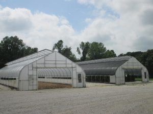 Figure 1. A 30% black shade cloth was added to one of the high tunnels