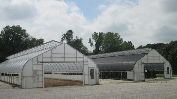 Temperature and Light Intensity in a High Tunnel Covered with 30% Black Shade Cloth