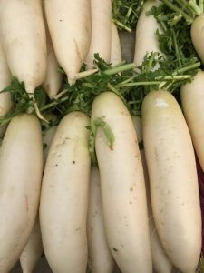 Figure 1. Daikon radish sold at farmers market in Asia.
