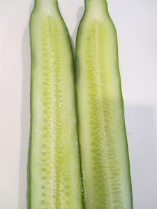 Figure 2. A seedless cucumber
