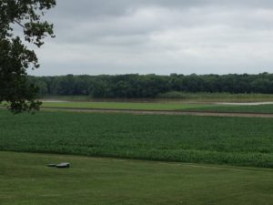 "Figure 1. Flooding in a field.Flooding, defined as the ""Flowing or overflowing of a field with water outside a grower's control"" is illustrated in Figure 1. Note that the Wabash River is visible through the break in the trees.."
