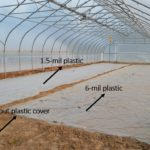 Figure 2. Demonstration soil solarization in a high tunnel.