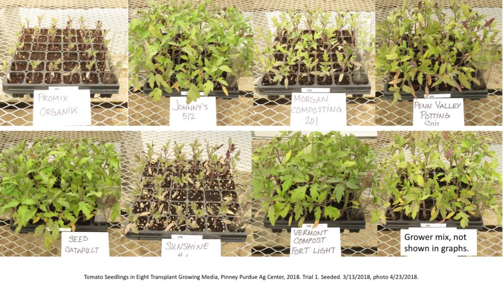Tomato Seedlings in Eight Transplant Growing Media, Pinney Purdue Ag Center, 2018. Trial 1.