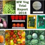 MW Veg Trial Report 2018