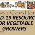 Veg Crops Hotline - COVID-19 Image