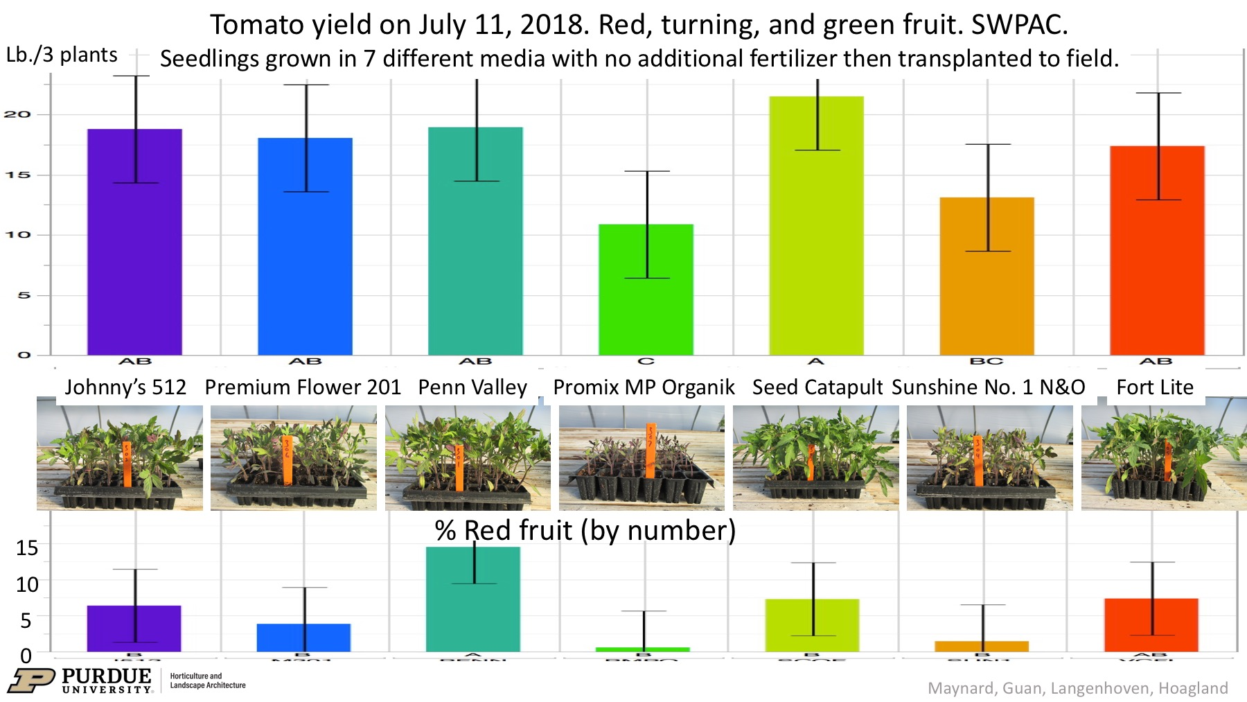 Figure 1. Early tomato fruit harvest and percent of fruit that are red from plants grown in seven different growing media and then transplanted to the field with no additional fertilizer. Yield in lb./3 plants includes all red, green, and turning fruit on plants. Bars with labeled with the same letter do not differ significantly based on Fisher's protected LSD. Error bars represent ± 95% confidence interval. Photos by W. Guan.