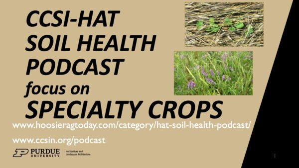 Specialty Crops Soil Health Podcast Episodes – Cover Crops on Market Farms, Microbes and Soil Health