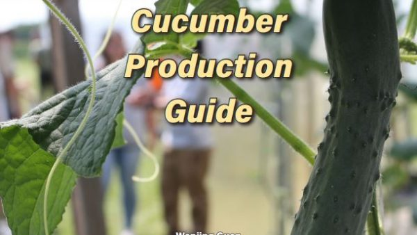 High Tunnel Cucumber Production Guide