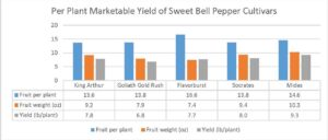 Figure 3. Marketable yield of colored sweet bell pepper cultivars.