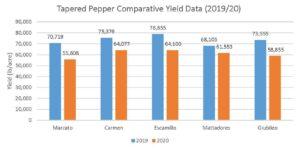 Figure 6. 2019 and 2020 comparative fruit yield (lb/acre) of sweet tapered pepper cultivars.