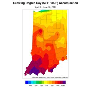 Figure 4. Modified growing degree day accumulations from April 1 to June 16, 2021.